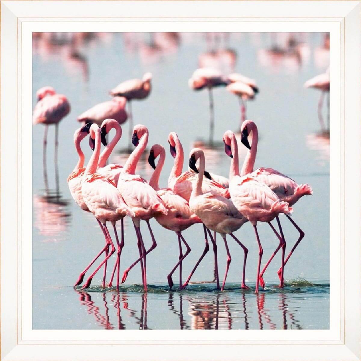 Flamingo-Flock-Framed-Art