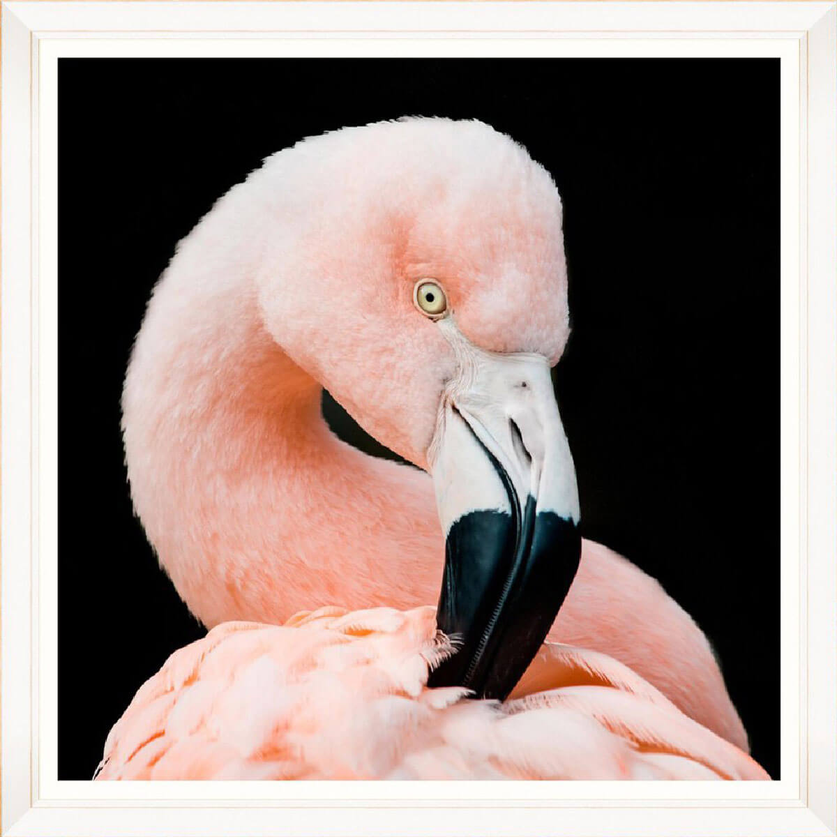 Flamingo-Framed-Art