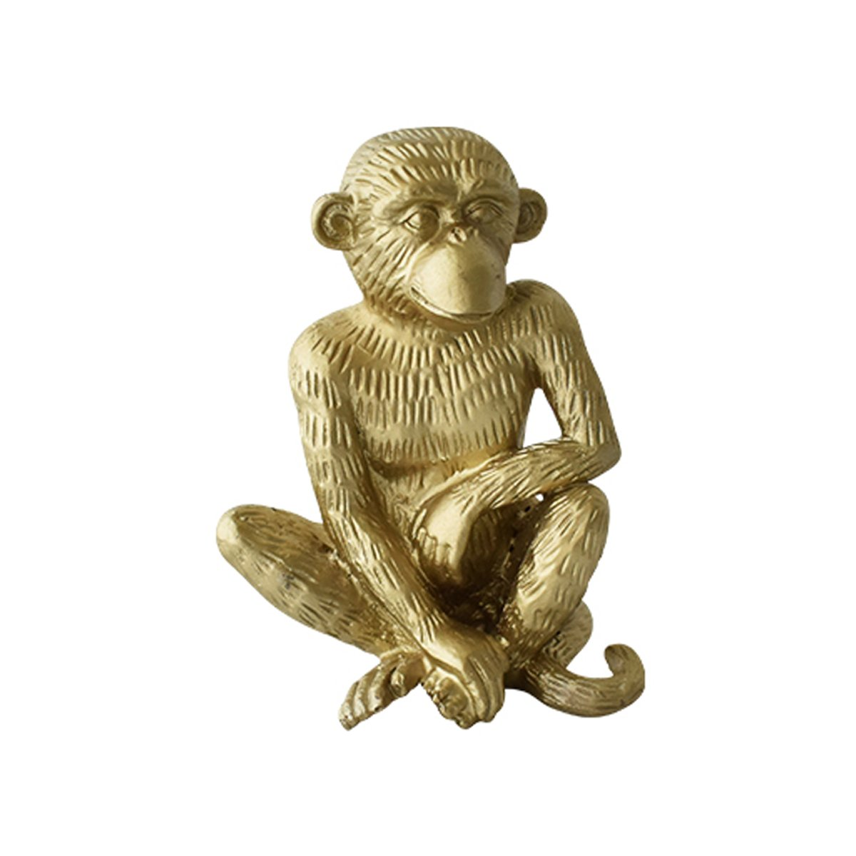 Monkey Look-Cozy-Home-Dubai