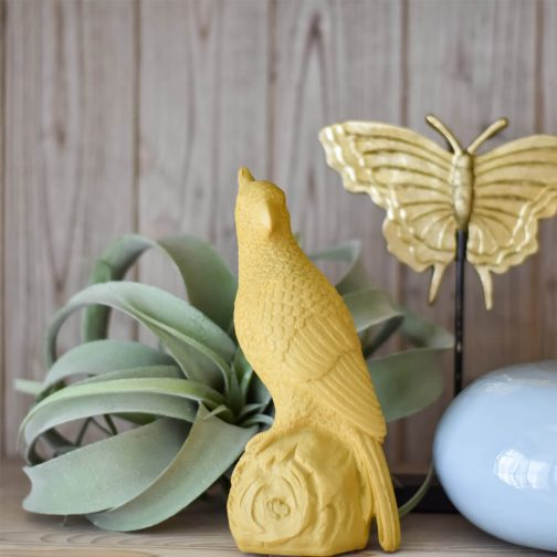 parrot-ochre-home-decor-in-dubai-cozy-home
