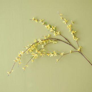 Forsythia Yellow 137cm