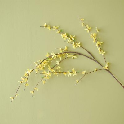 Forsythia Yellow 137cm