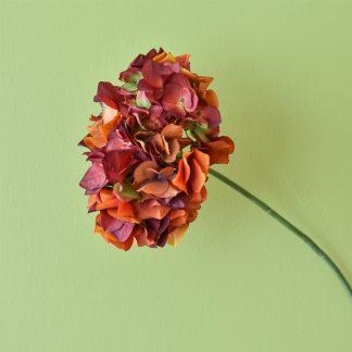 Orange Hydrangea Single Stem 60cm